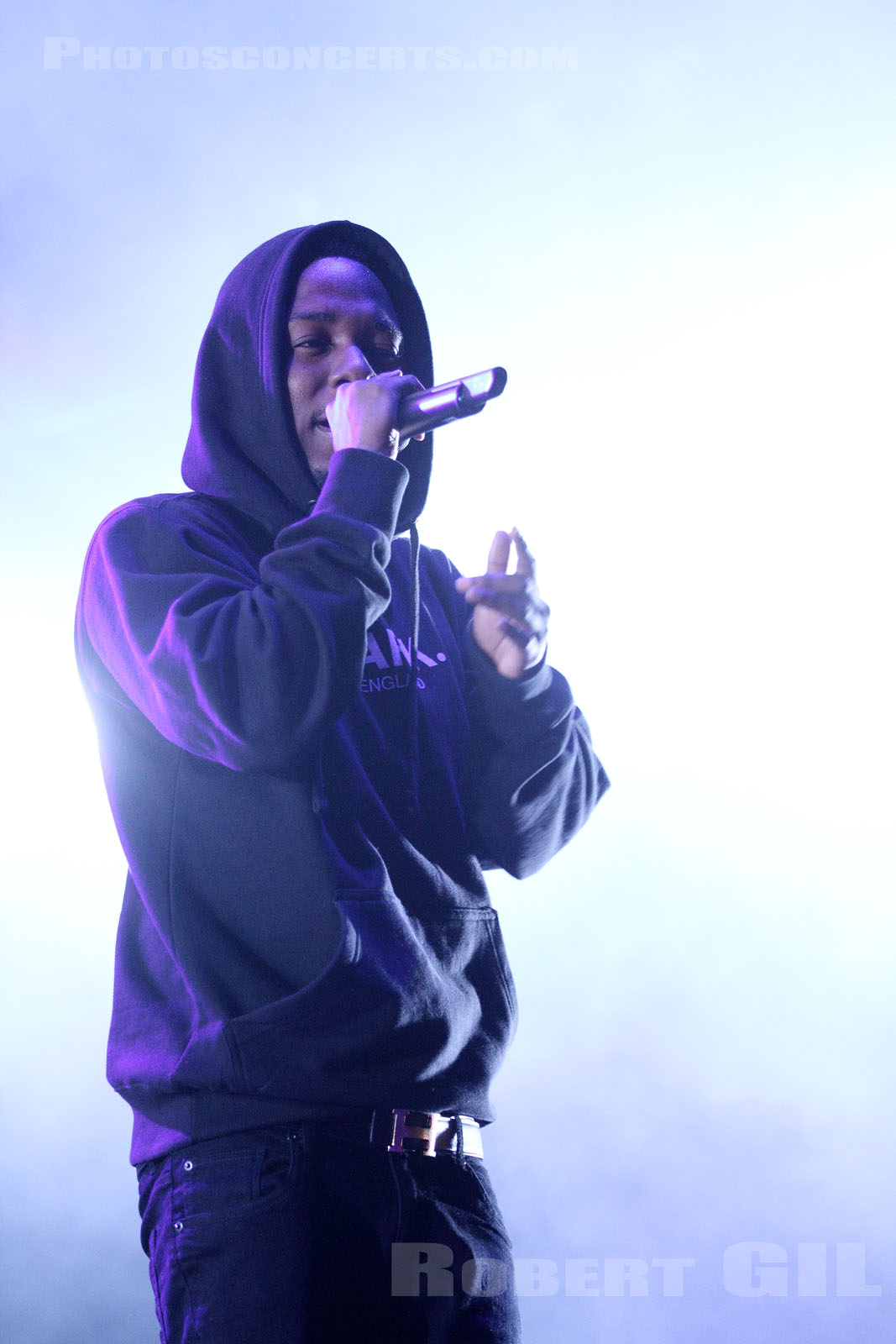 KENDRICK LAMAR - 2013-08-23 - SAINT CLOUD - Domaine National - Scene de la Cascade