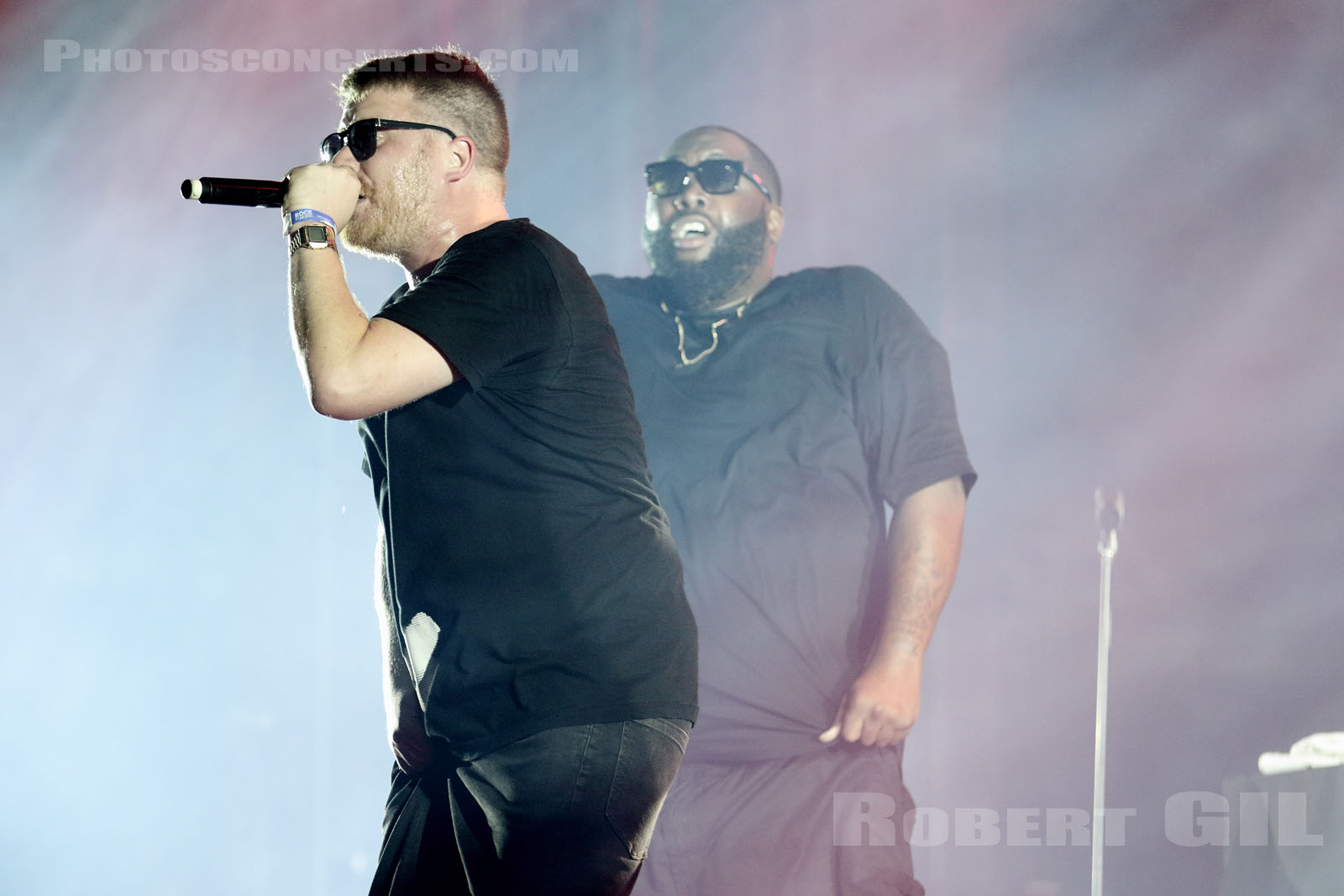 RUN THE JEWELS - 2015-08-30 - SAINT CLOUD - Domaine National - Scene de l'Industrie