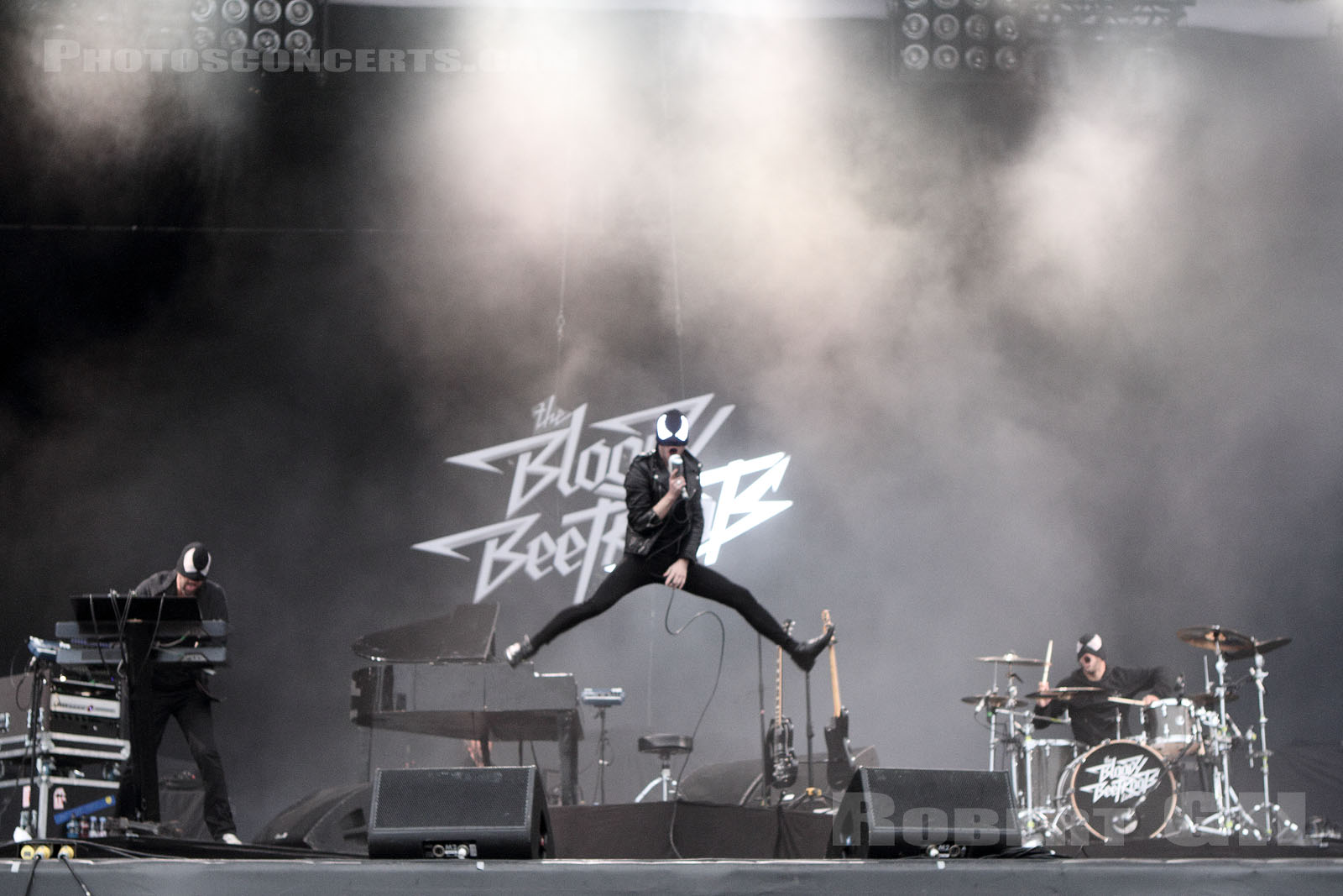 THE BLOODY BEETROOTS - 2013-08-25 - SAINT CLOUD - Domaine National - Grande Scene